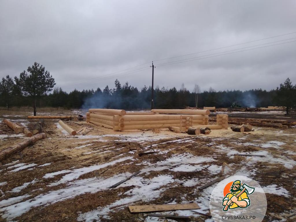 Заготовка бревна для строительства и сборка сруба дома, рубка в лапу