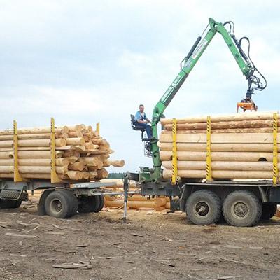Мы - производители срубов! Заготовка бревна и строительство срубы производится вблизи Велижа Смоленской области